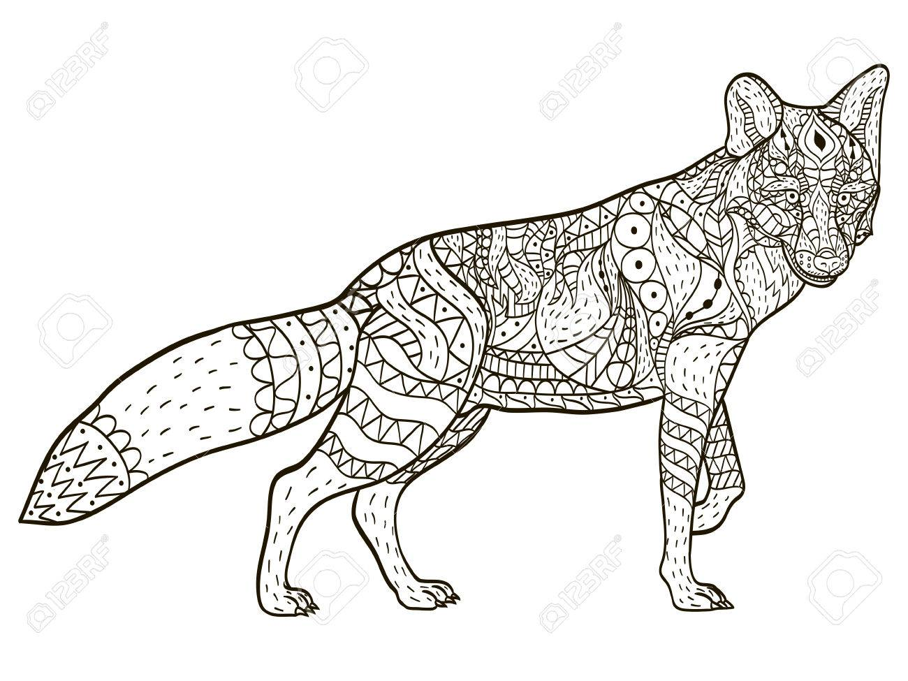 Fox Coloring book vector for adults