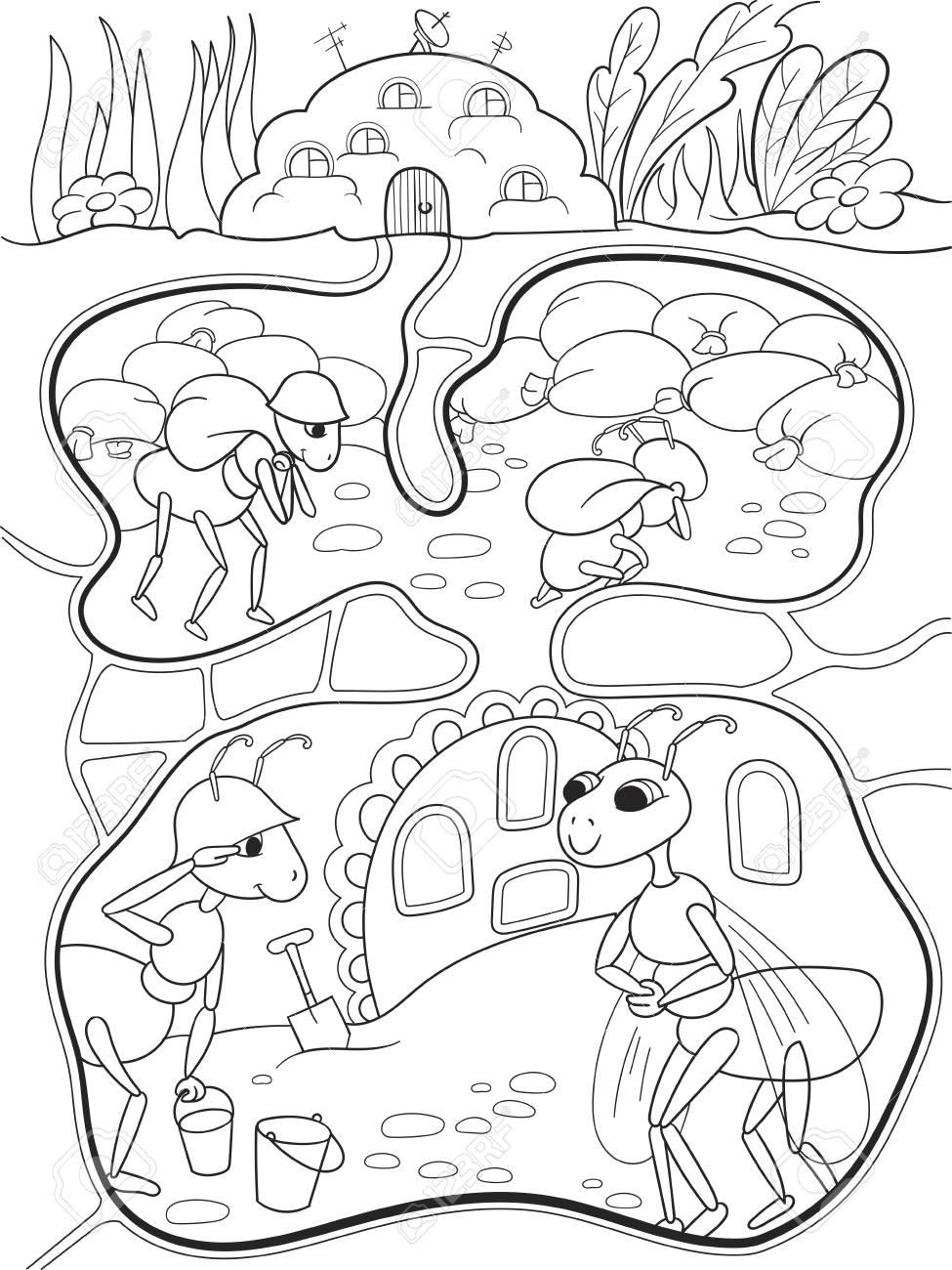 Interior Y La Vida Familiar De Las Hormigas En Un Hormiguero Para Colorear Ilustración De Dibujos Animados De Los Niños