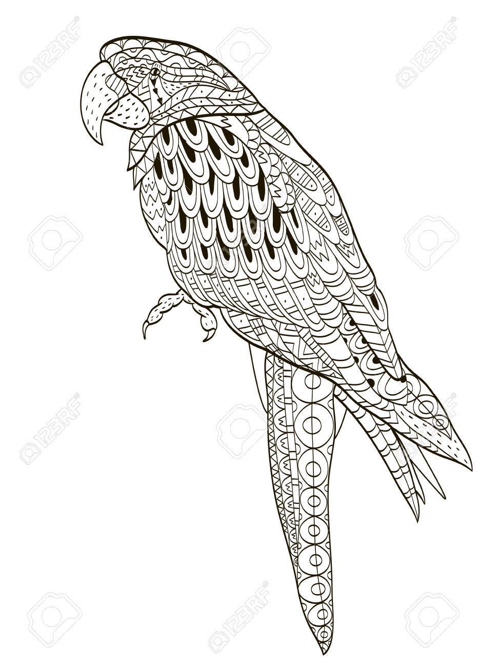 Vettoriale Pappagallo Uccello Tropicale Illustrazione Vettoriale
