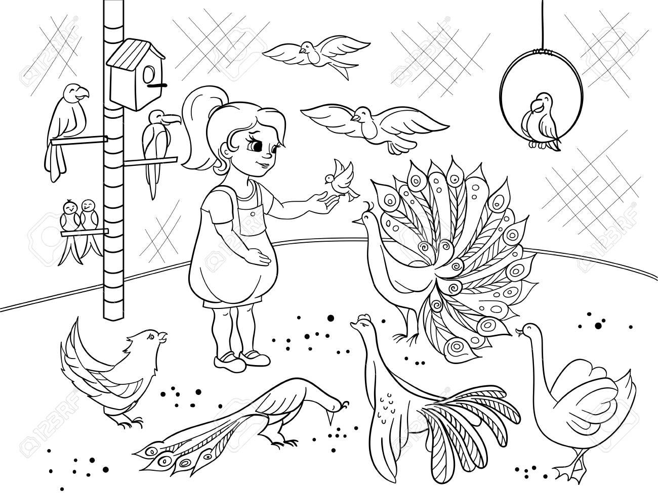 Dibujos Animados De Niños Para Colorear El Zoológico De Aves De Contacto Libro De Imágenes En Blanco Y Negro De Aves Ornitología Para La Niña