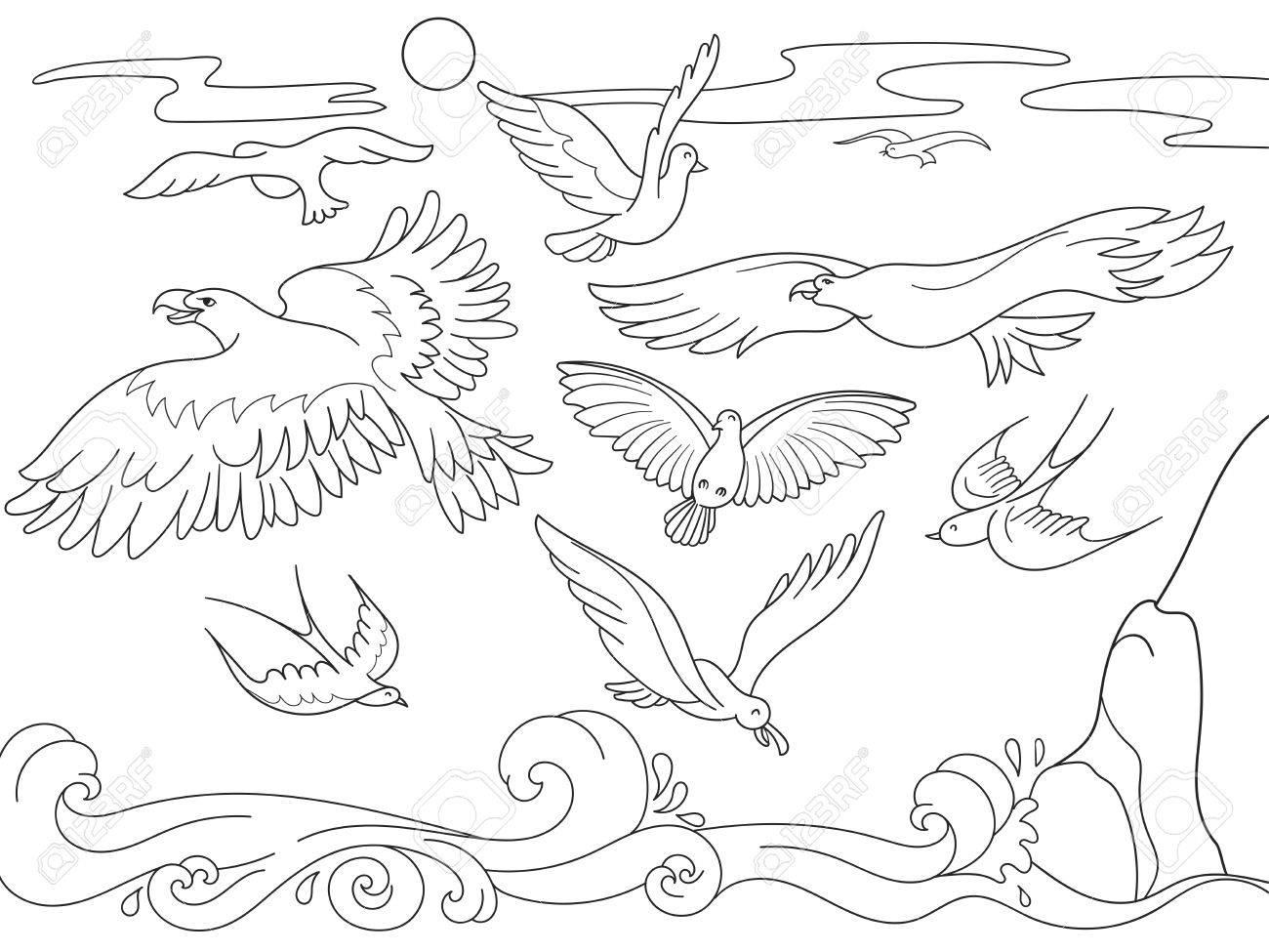 Dibujos Animados De Libro Para Colorear Para Niños Sobre El Mar Vuelan Pájaros De Diferentes Clases Líneas Blancas Y Negras