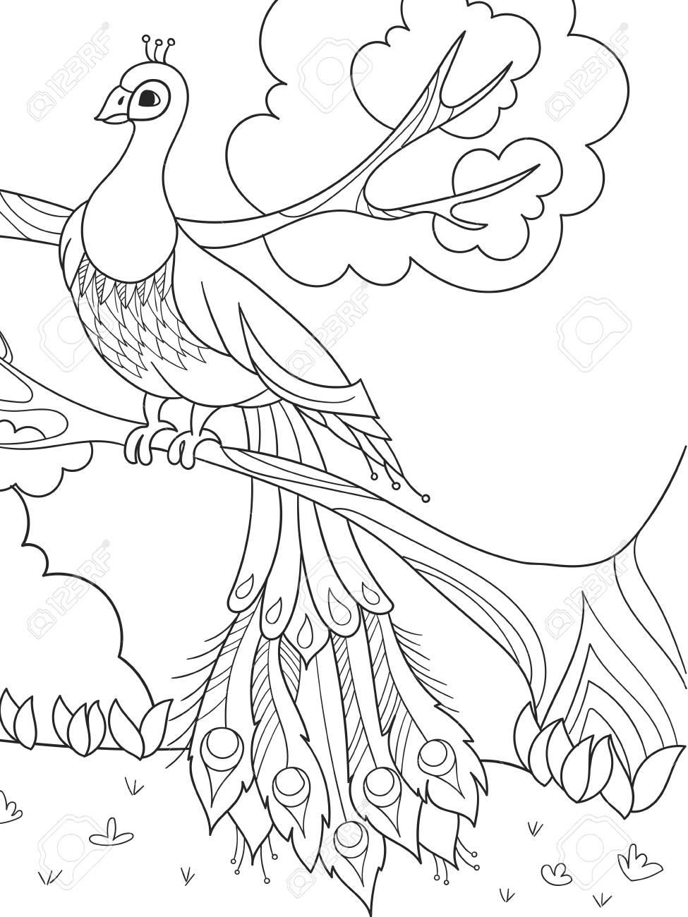 Dibujos Animados Para Colorear Para Niños Un Pájaro Una Pluma De Pájaro O Un Pavo Real En Un árbol