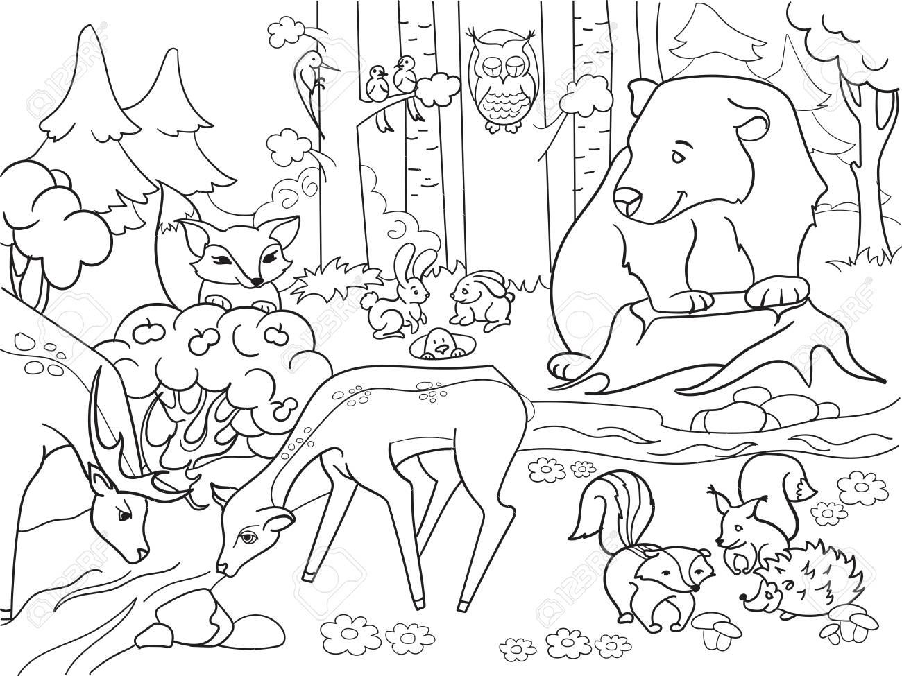Paisaje Del Bosque Con El Libro De Colorear De Los Animales Para La