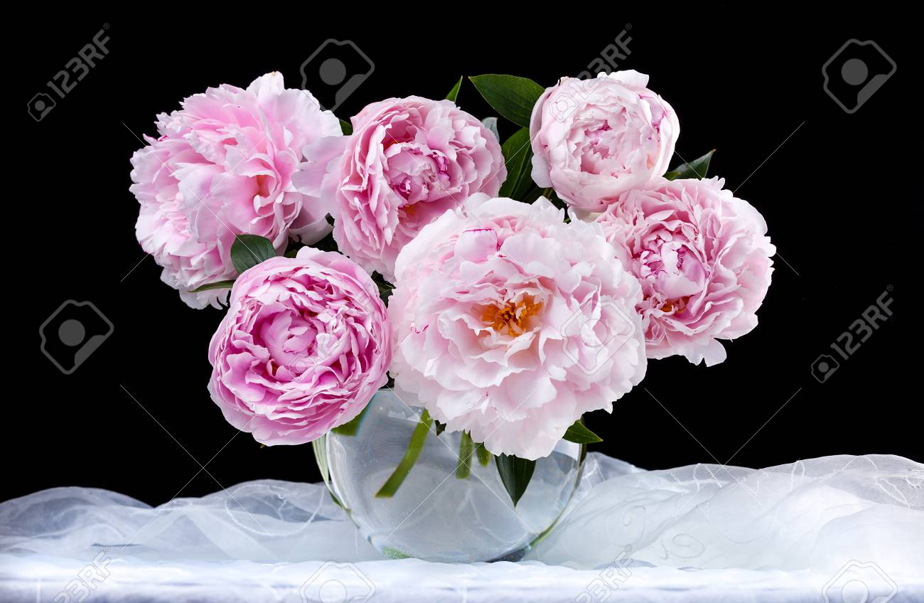 Still life with beautiful pink peonies in vase stock photo still life with beautiful pink peonies in vase stock photo 30537554 reviewsmspy