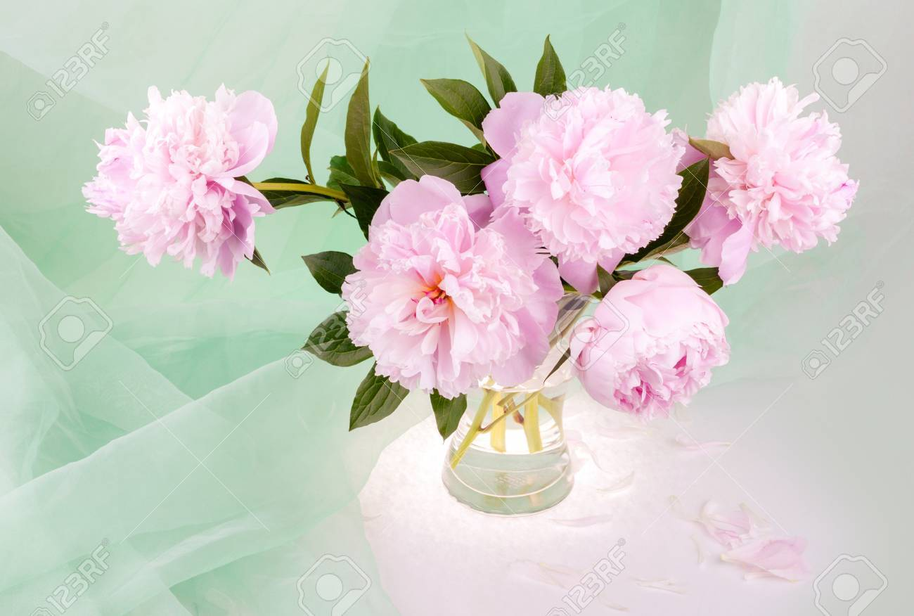 Still life with beautiful pink peonies in a glass vase stock photo still life with beautiful pink peonies in a glass vase stock photo 34390030 reviewsmspy