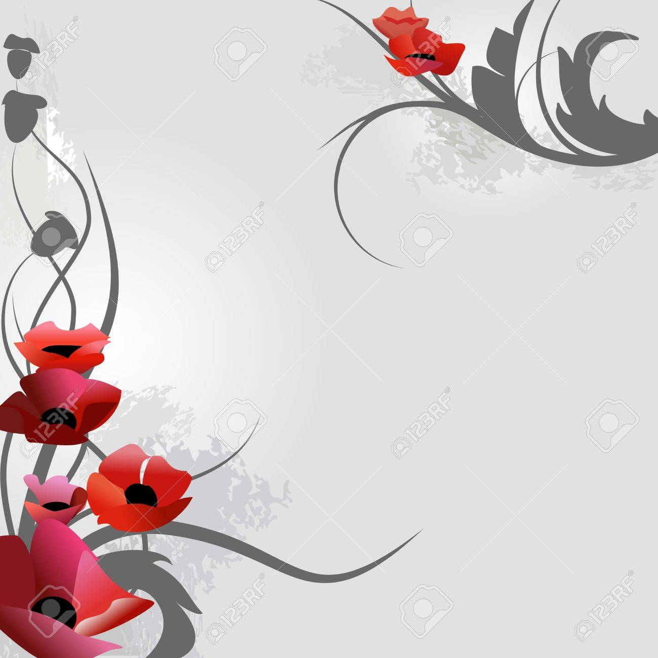 Poppies over grey illustration Stock Vector - 5624322