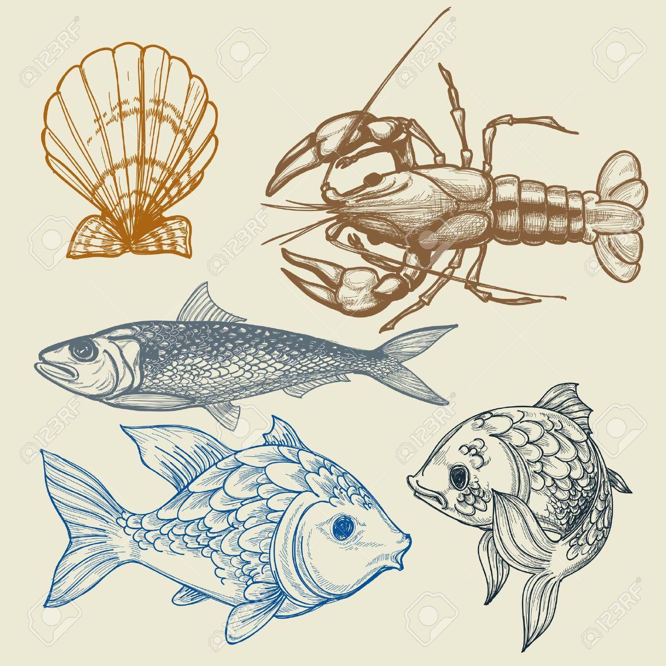 Fish, lobster, shell set - 13219494