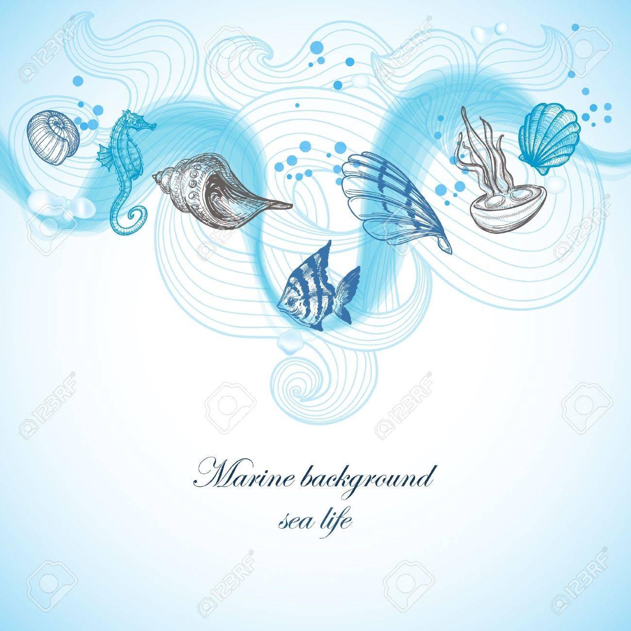 Sea background, marine fauna hand drawn elements Stock Vector - 13655662