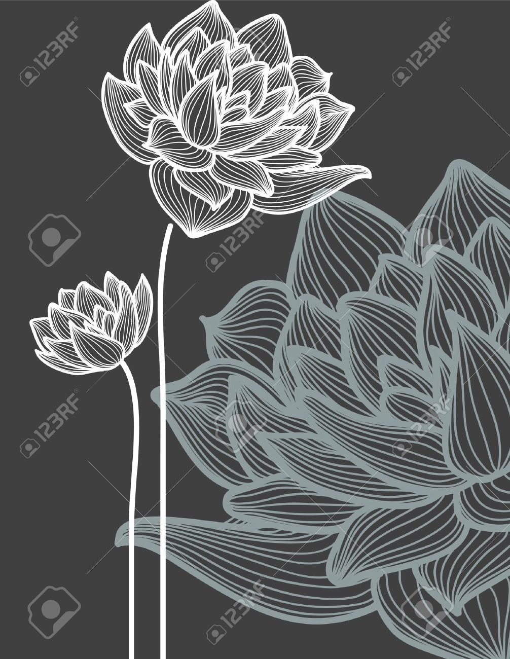 Yoga pattern background seamless pattern with five petals lotus flower - Lotus Flower Flowers Over Black Background Illustration