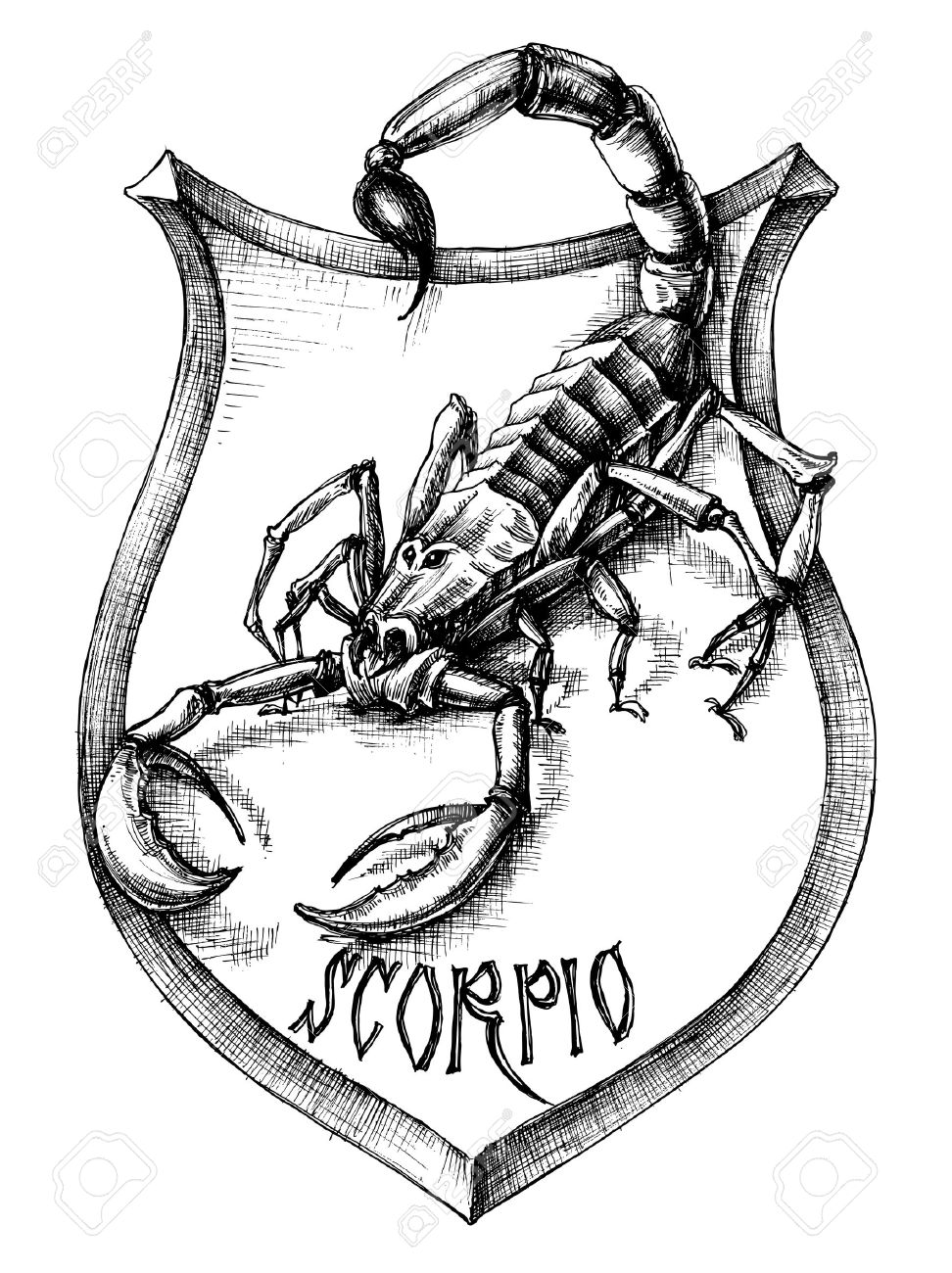 Escorpión Heráldica Escorpio Signo Zodiacal Ilustraciones