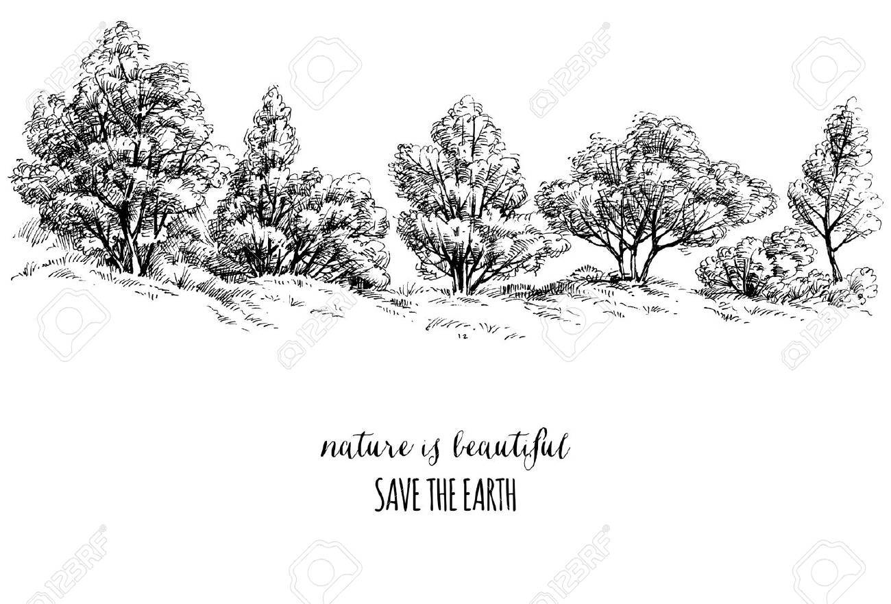 Earth Day card, trees sketch - 53513227