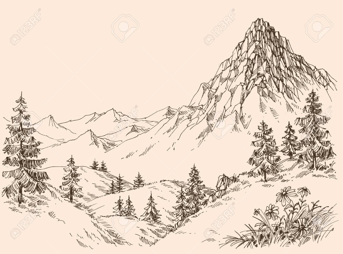 Nature in the mountains vector - 58689938