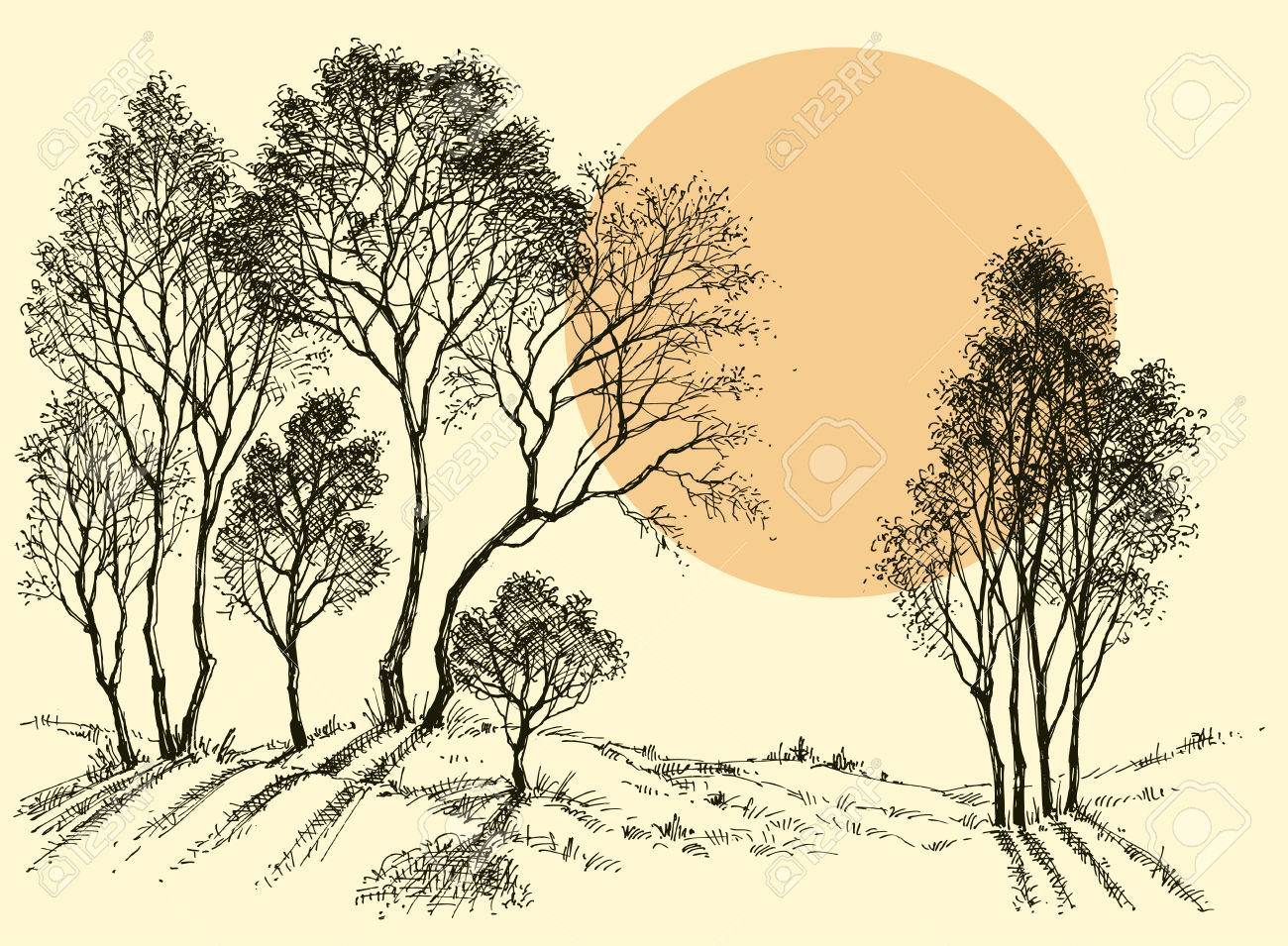 Sunset In The Forest Trees Wallpaper Landscape Sketch