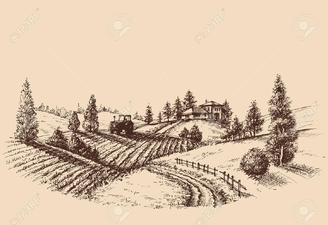 Farm landscape etch, agriculture scene - 61109959