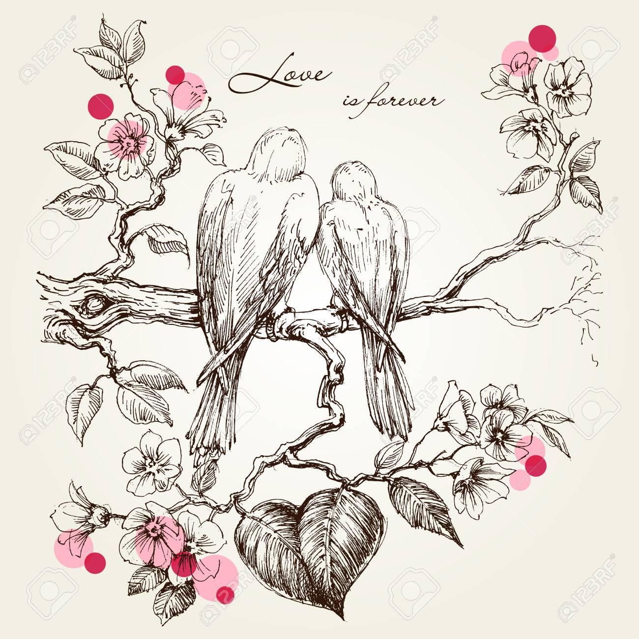 Love birds on tree branch. Valentine's day design - 71666419
