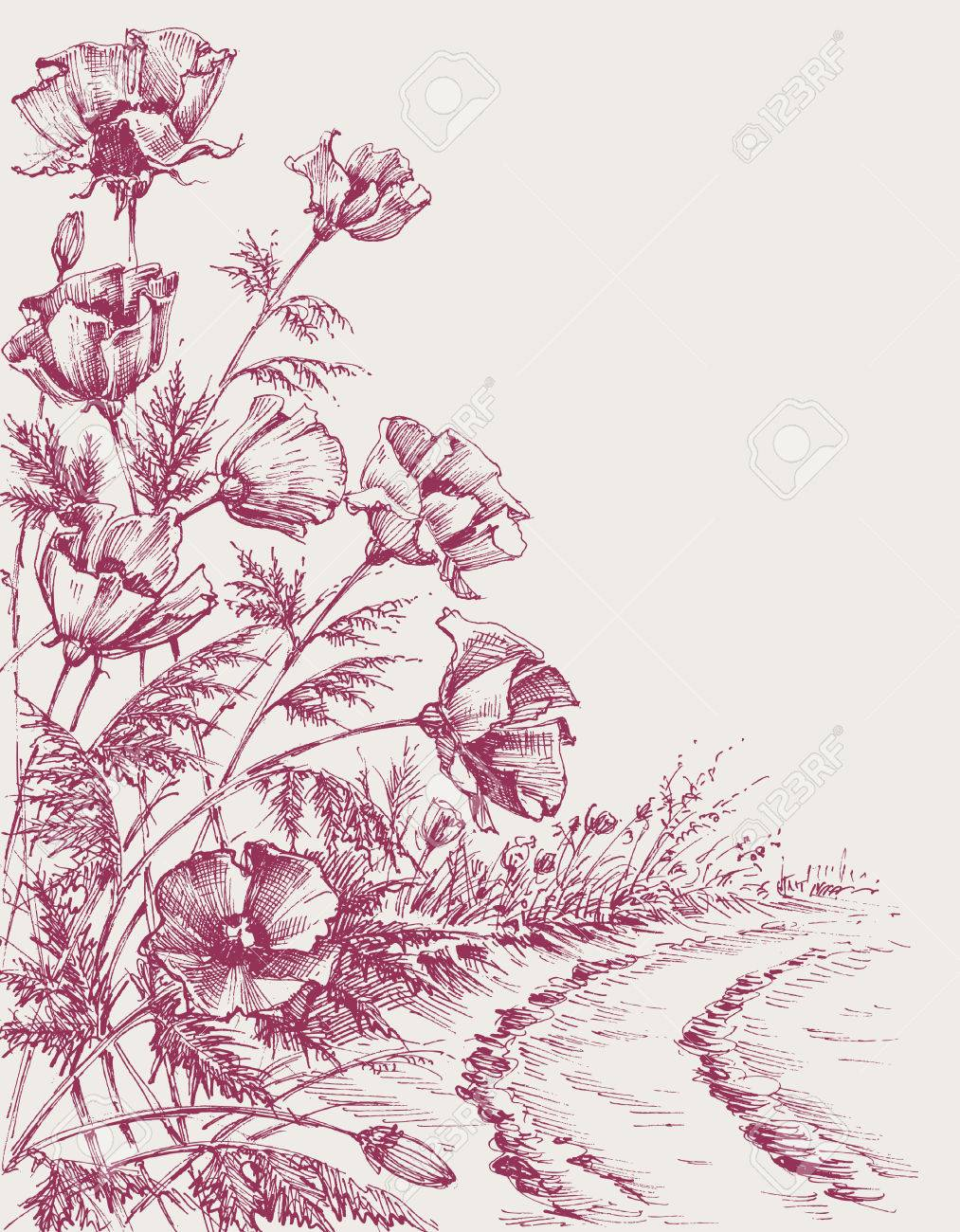 Poppy flowers on the road hand drawing. Summer background design
