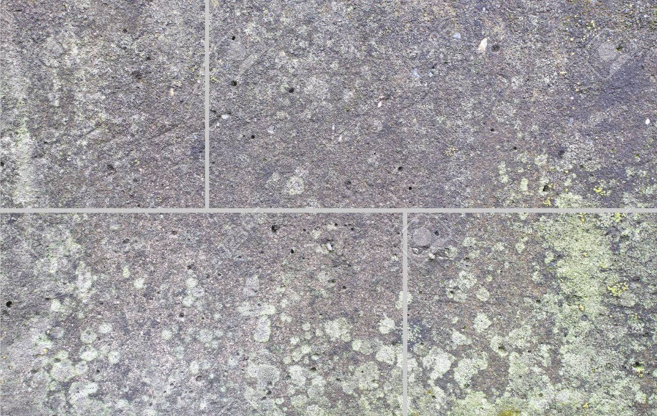 Concrete floor tile texture and seamless background stock photo concrete floor tile texture and seamless background stock photo 49055682 dailygadgetfo Image collections