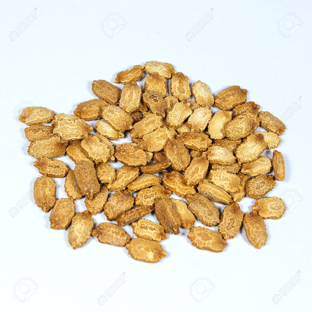 Bitter Seed