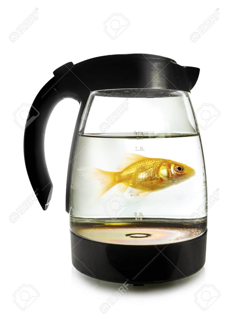 電気ケトル、白い背景で隔離の泳ぎ回る金魚 の写真素材・画像素材 ...