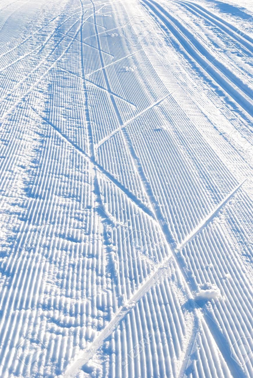 cross country ski run in blue evening light Stock Photo - 9980156