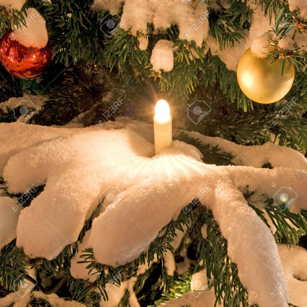 christmas tree with snow and decoration in winter Stock Photo - 10300408