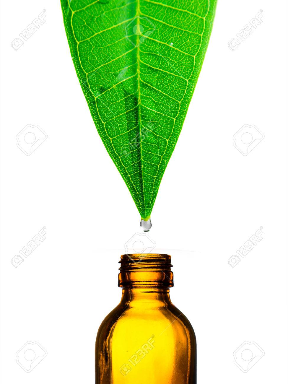 Herbal alternative medicine water drop falling down from a leaf to the bottle - 40922839