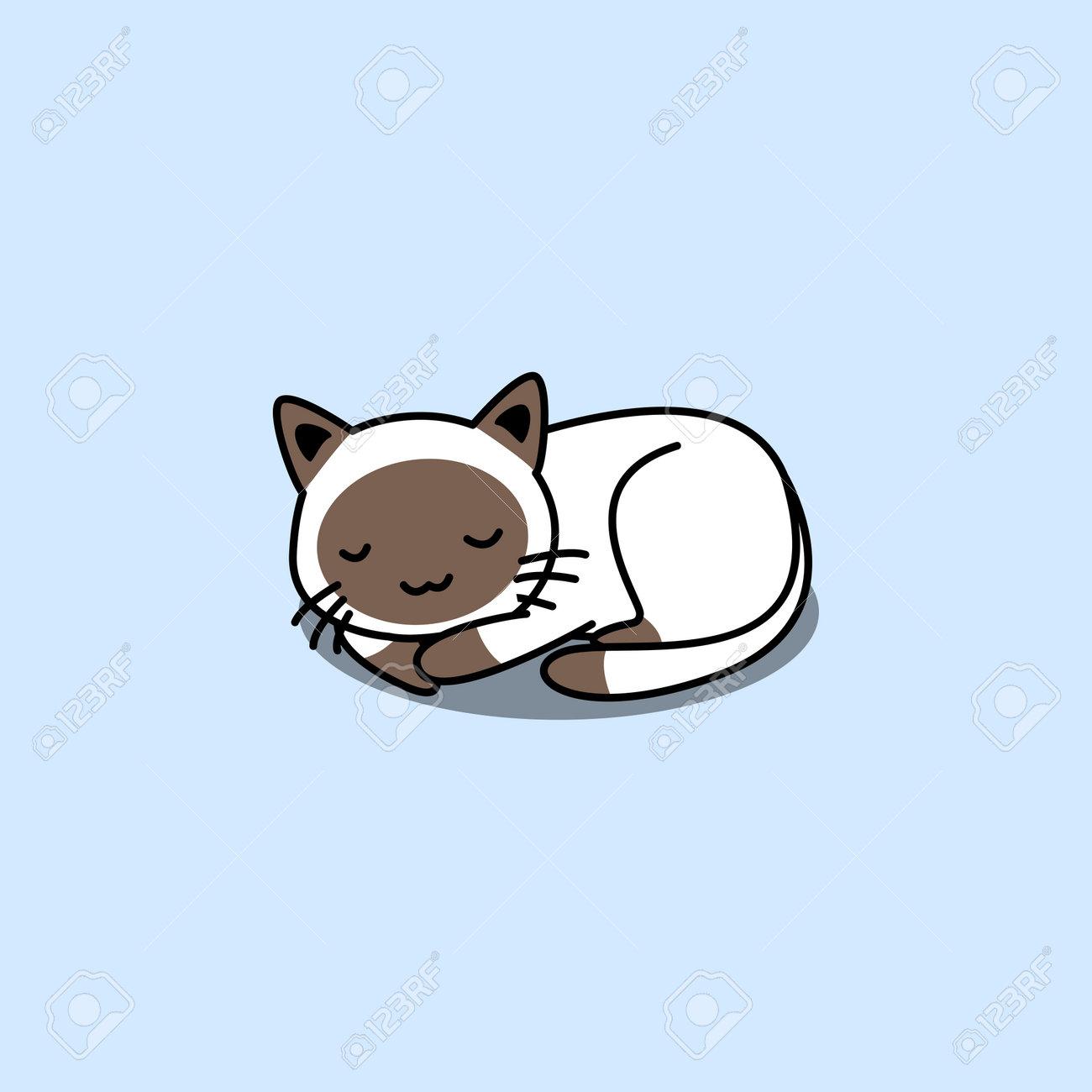 Cute siamese cat sleeping cartoon, vector illustration - 169151624