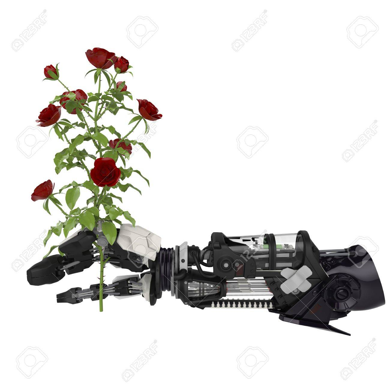 A Roses flower in a robotic hand Stock Photo - 19736594