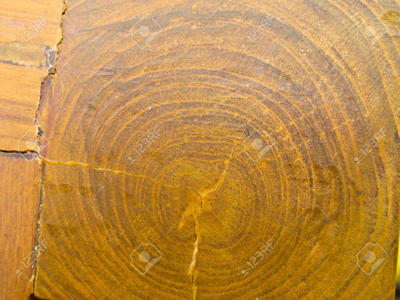 A fake wood grain textured cabinet laminate Stock Photo - 20695044