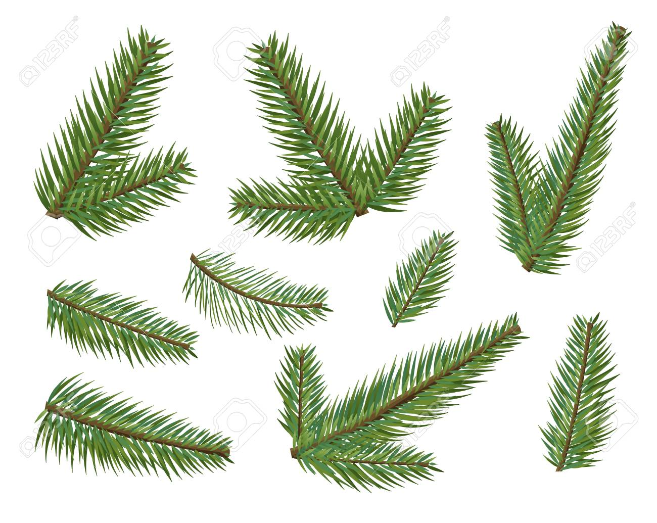 Christmas Branch Tree.Different Christmas Tree Branches Set Christmas Elements Tree