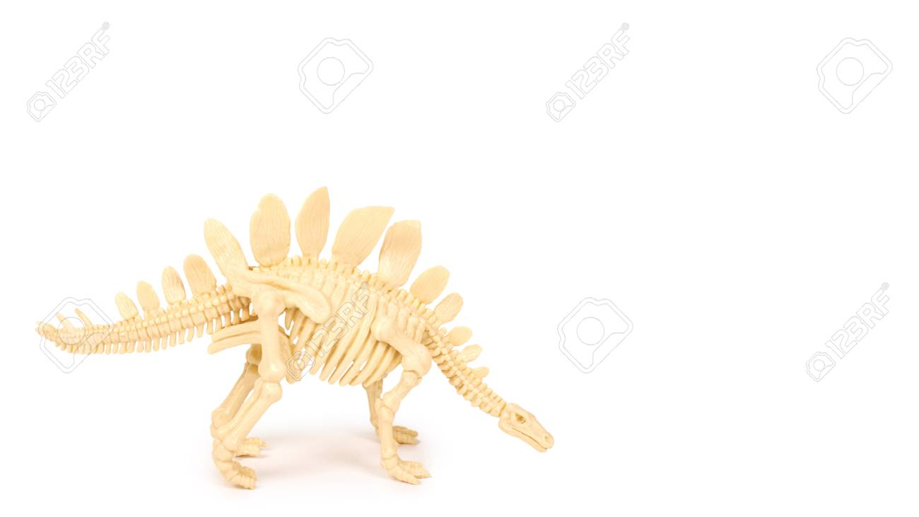 Plastic Toy Animal Dinosaur Skeleton Isolated On White Background Copy Space Template Stock