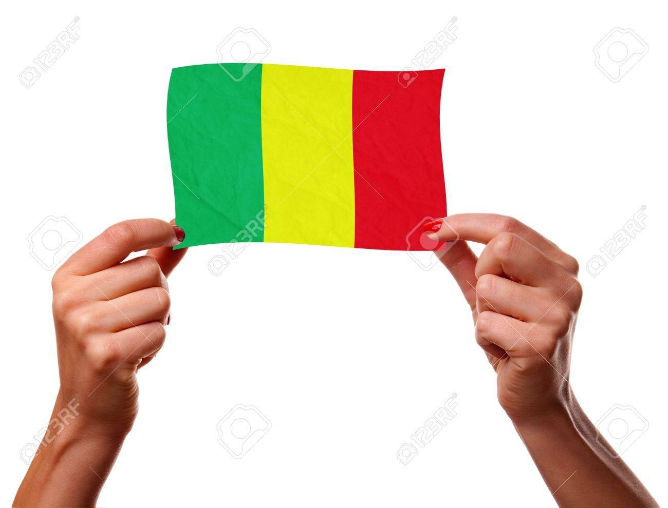 La bandera de Malí Foto de archivo - 12407135