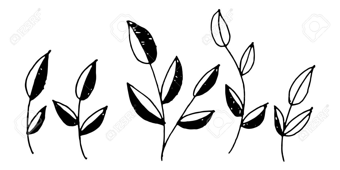 Vector Black And White Leaf Leaves Pattern Simple Monochrome