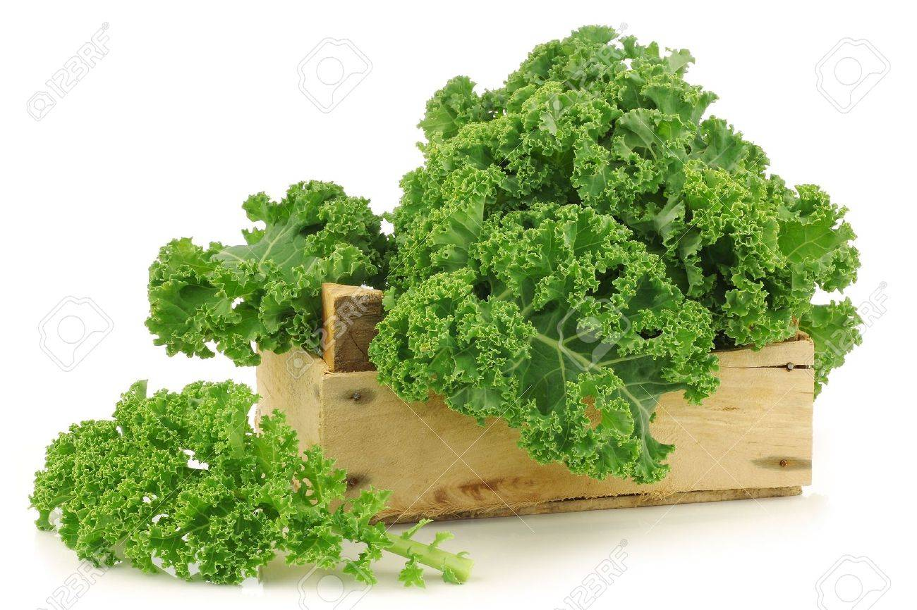 freshly harvested kale cabbage in a wooden crate on a white background - 15463047