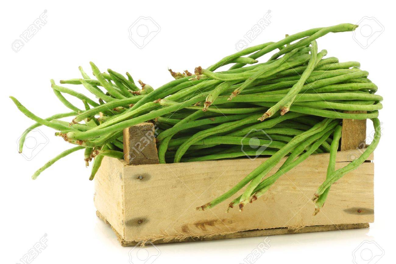fresh long beans Vigna unguiculata subsp  sesquipedalis  in a wooden crate on a white background Stock Photo - 15886607