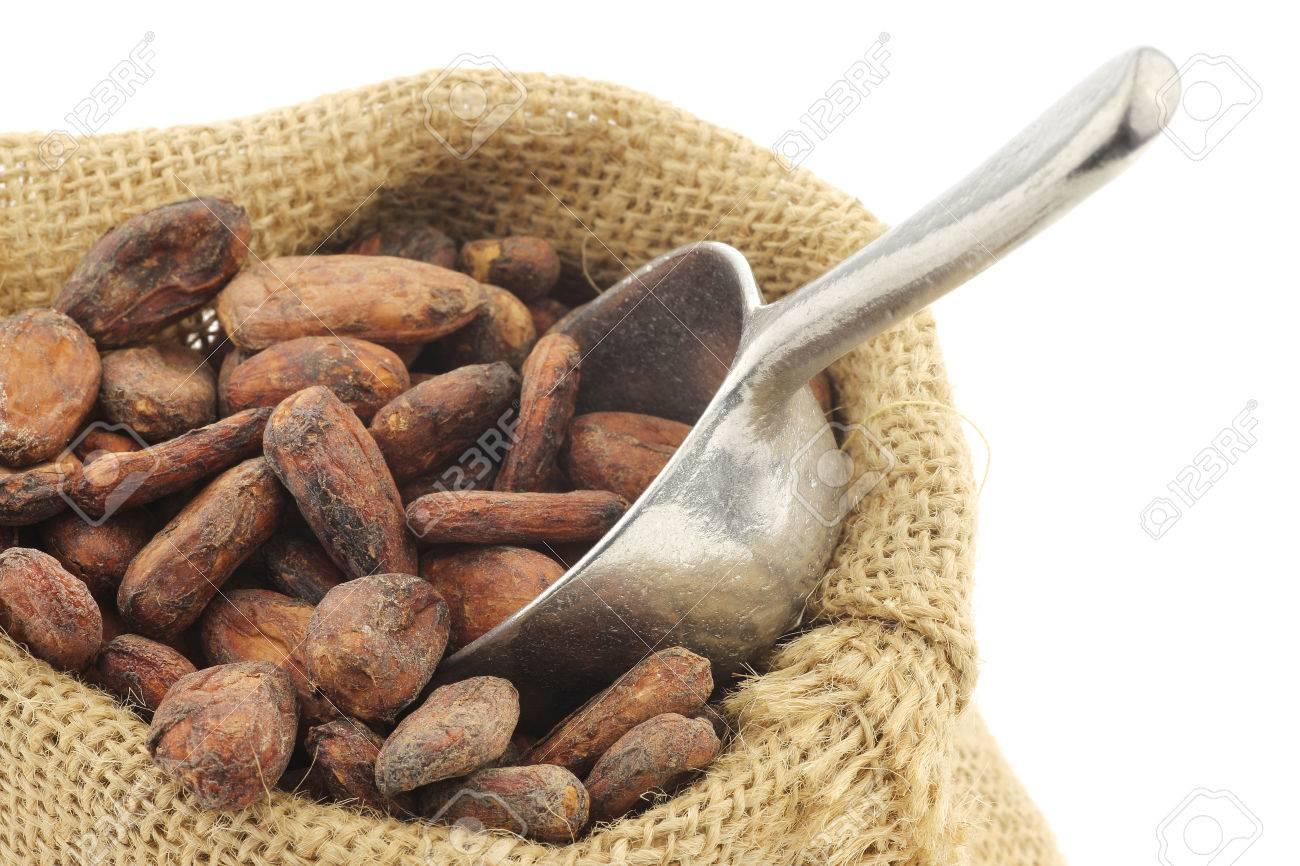 Feves De Cacao Dans Un Sac De Toile De Jute Avec Une Cuillere D