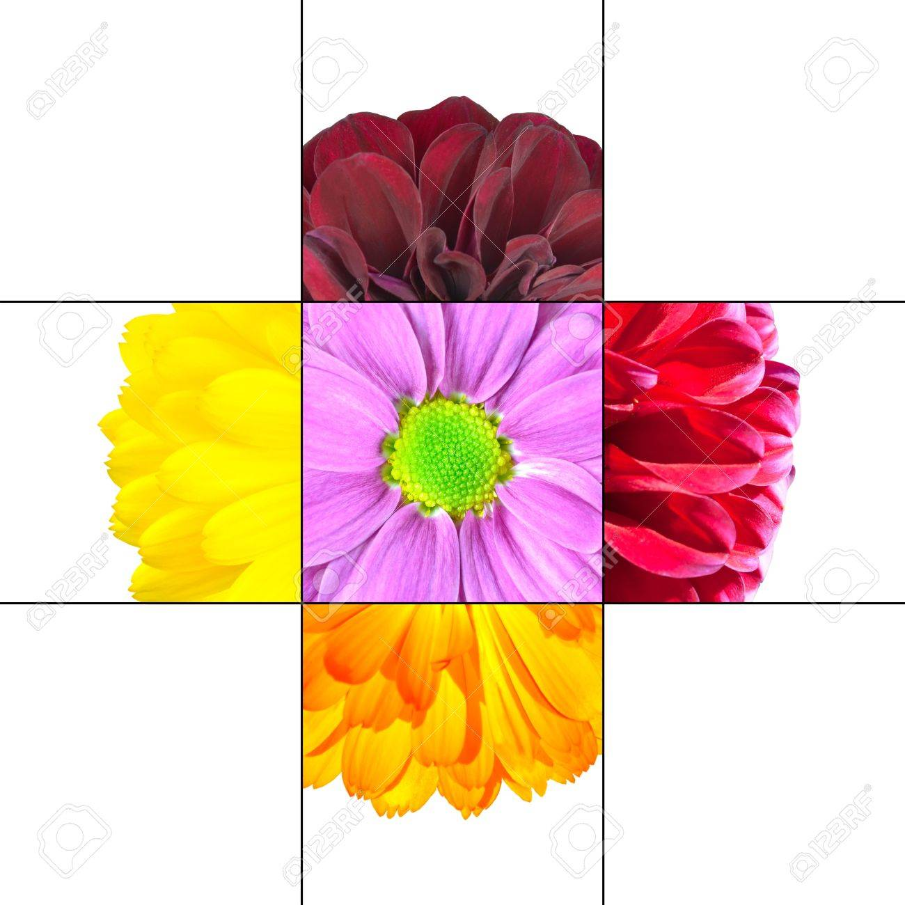 Colorful daisy flower mosaic design which is consisting of 9 stock colorful daisy flower mosaic design which is consisting of 9 squares on 3x3 grid with parts izmirmasajfo