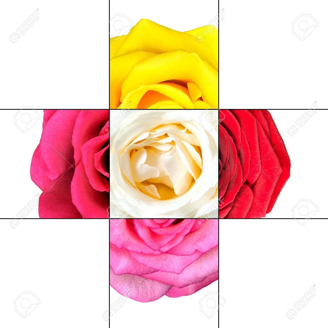 colorful rose flower mosaic design which is consisting of 9 squares