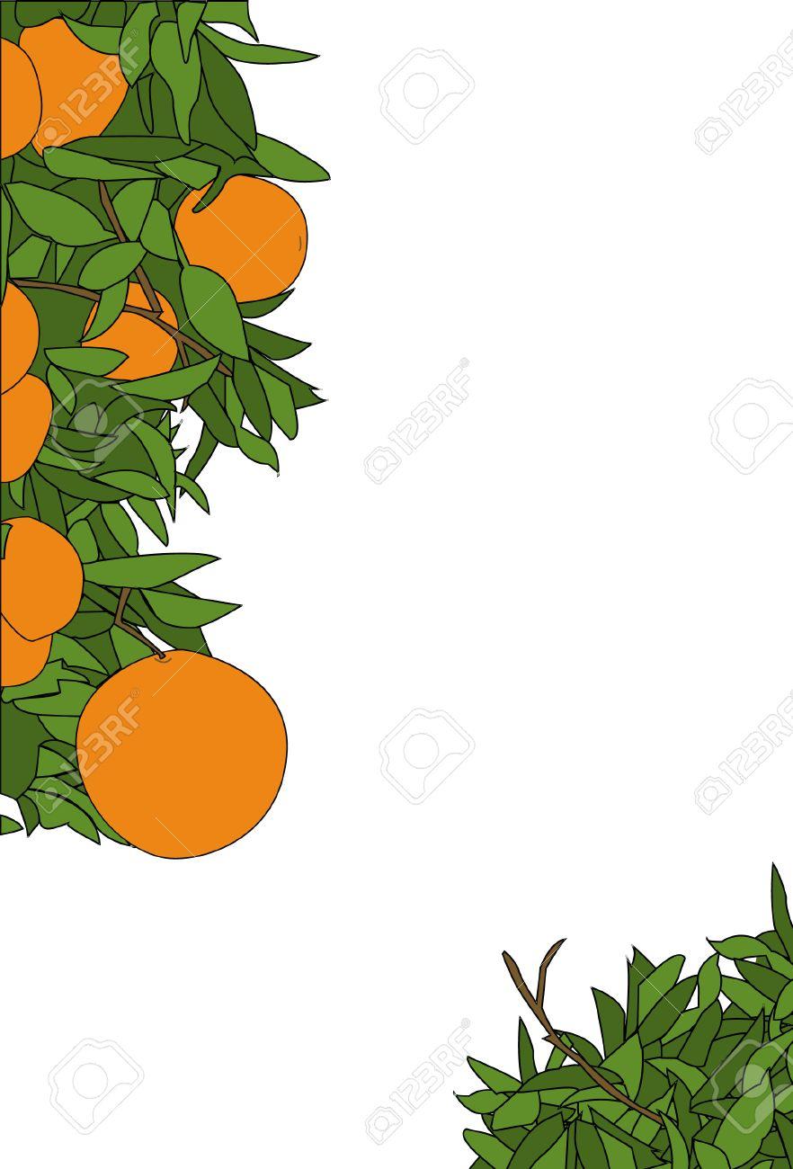 Page Borders Orange an Orange Plant Page Border