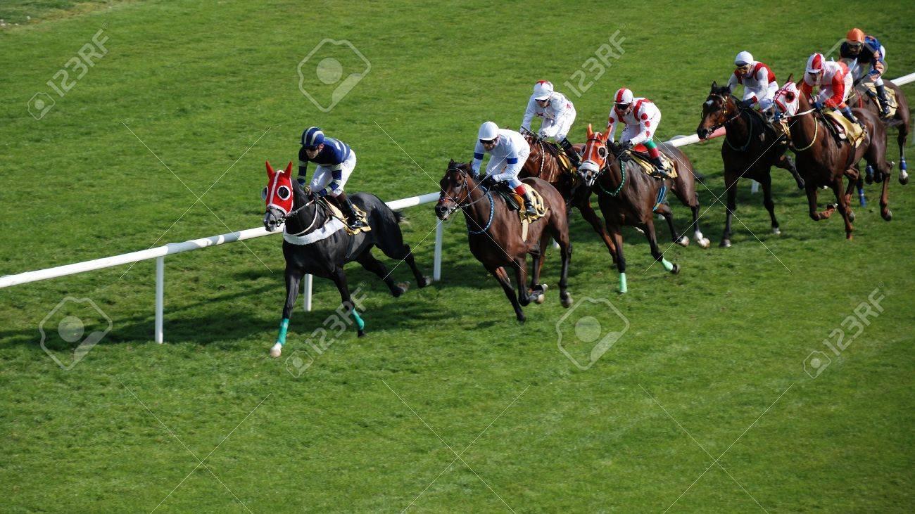 Horses and jockeys during a race. Stock Photo - 13337757