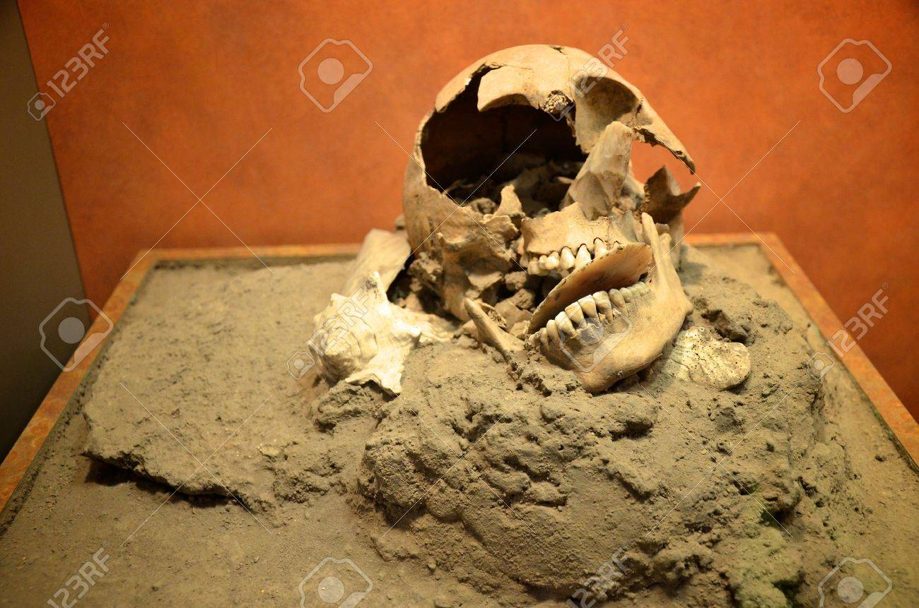 [Image: 13072409-old-ancient-broken-skull-in-mexico-.jpg]