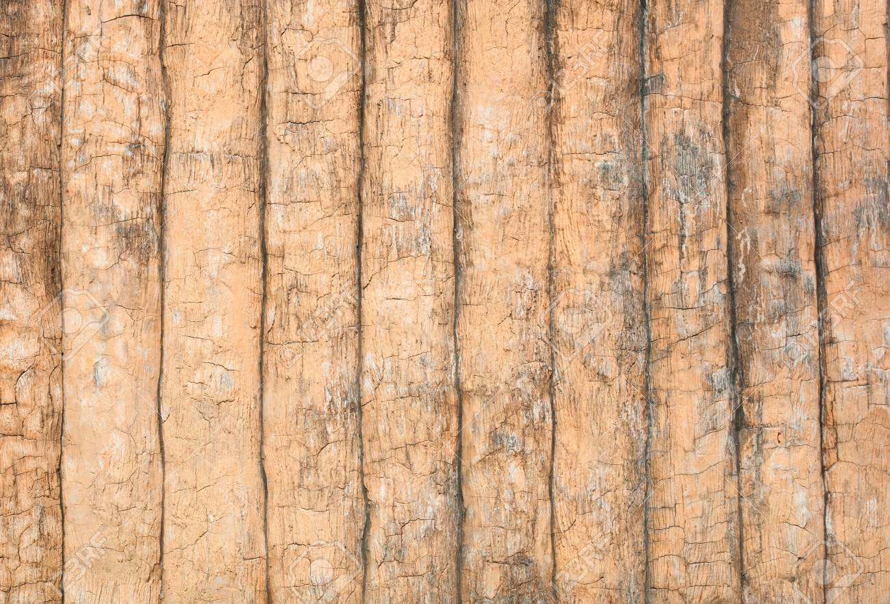 Texture of Cement Wall Stock Photo - 10748067