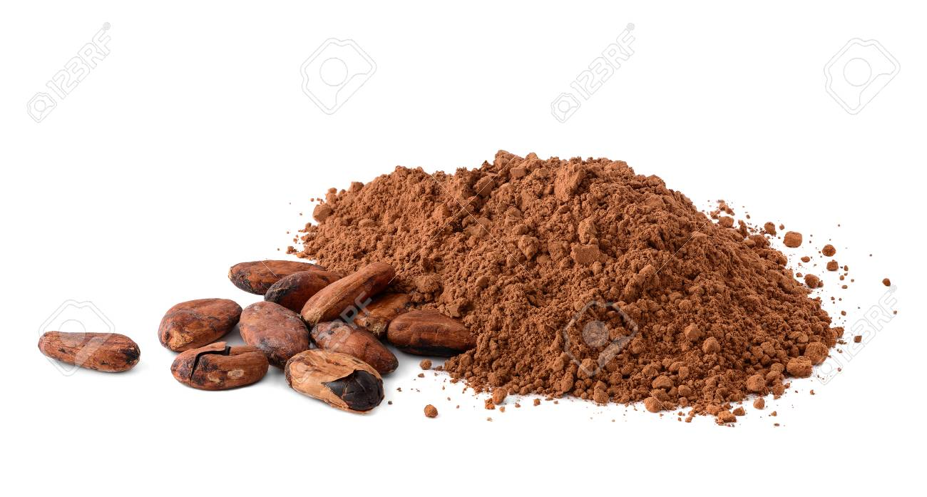 Cacao powder and cocoa beans isolated on white - 91097397