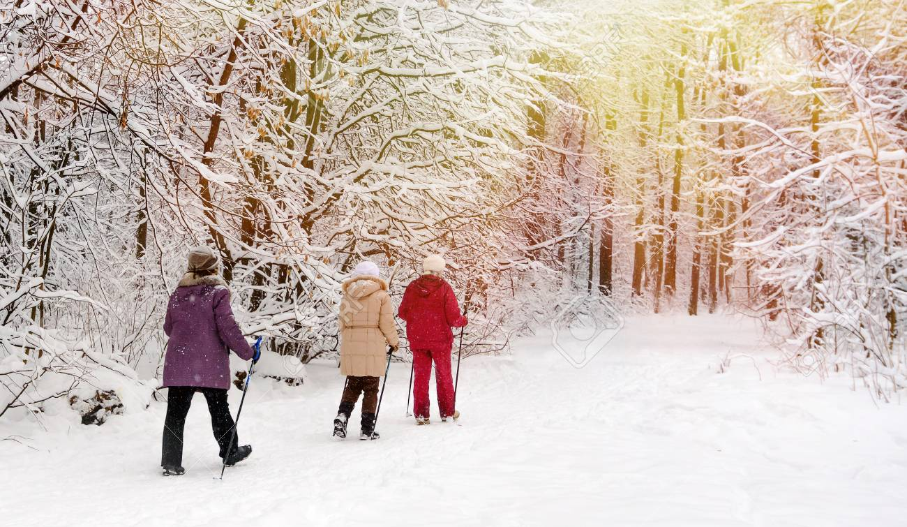 Nordic walking in the winter park. - 94807509