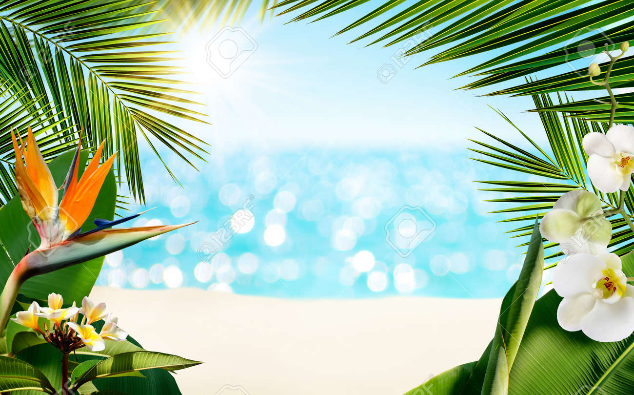 Tropical sandy beach with blurred sea surrounded by tropical palm leaves plants and flowers. - 169711153