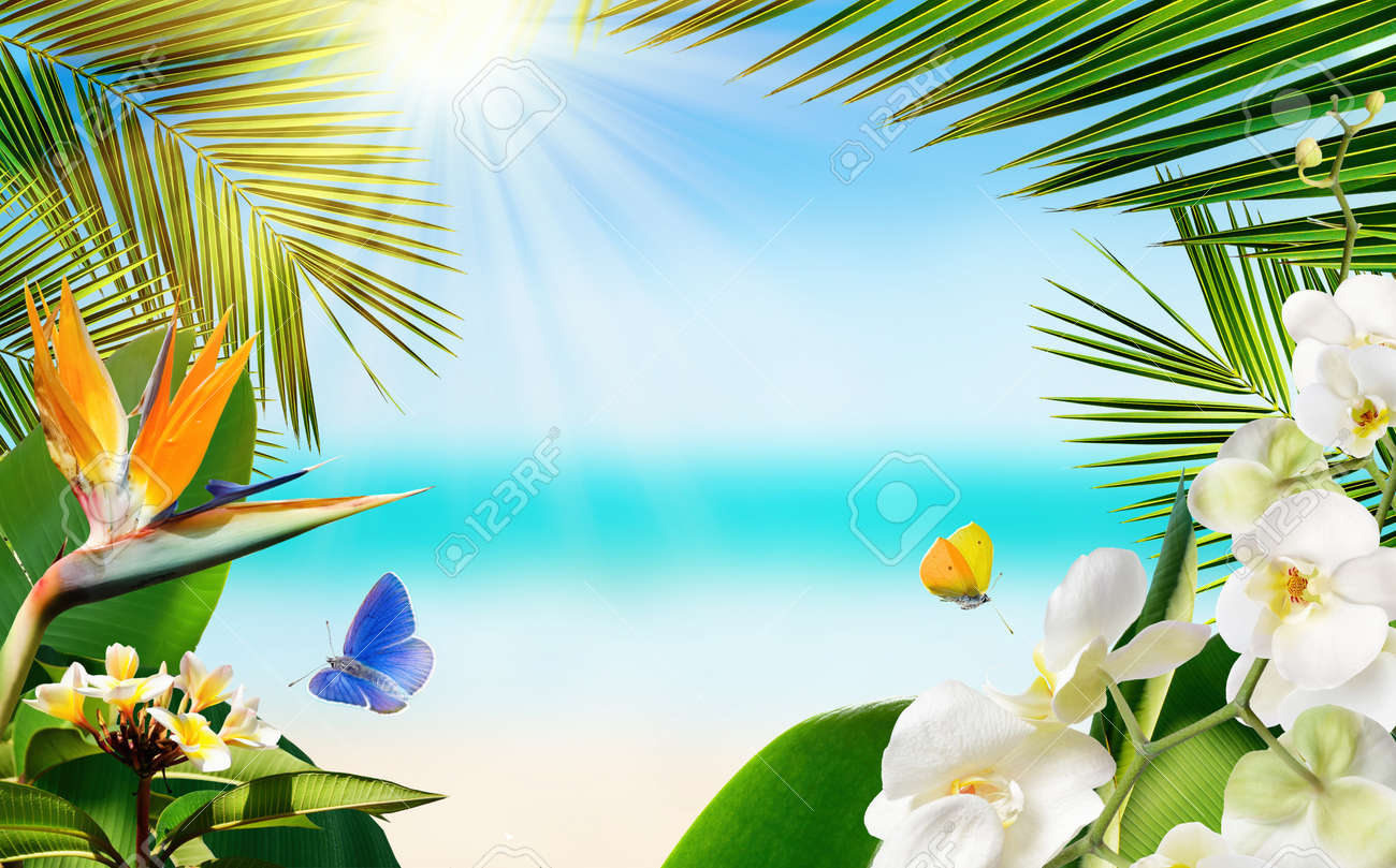 Tropical sandy beach with blurred sea tropical palm leaves, plants, flowers and butterflies - 169711152