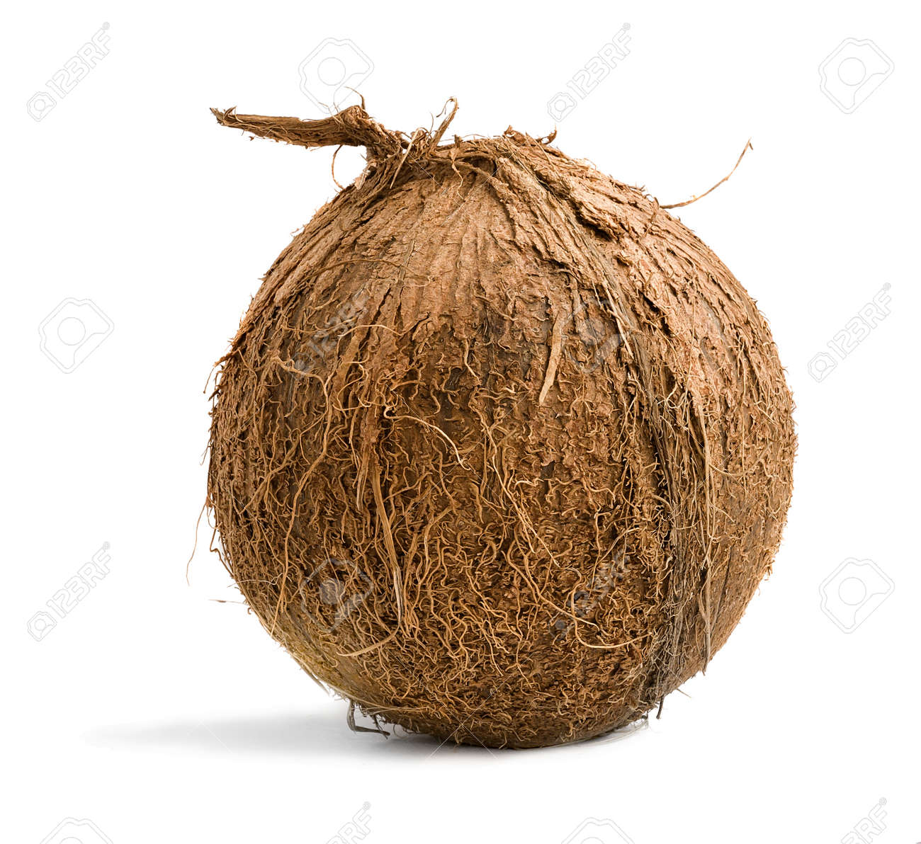Tropical fruit a whole coconut isolated on a white background - 170947484