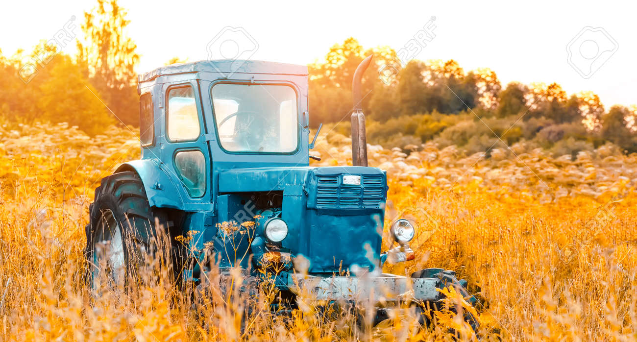 Old blue tractor on the tall grass field - 171689742