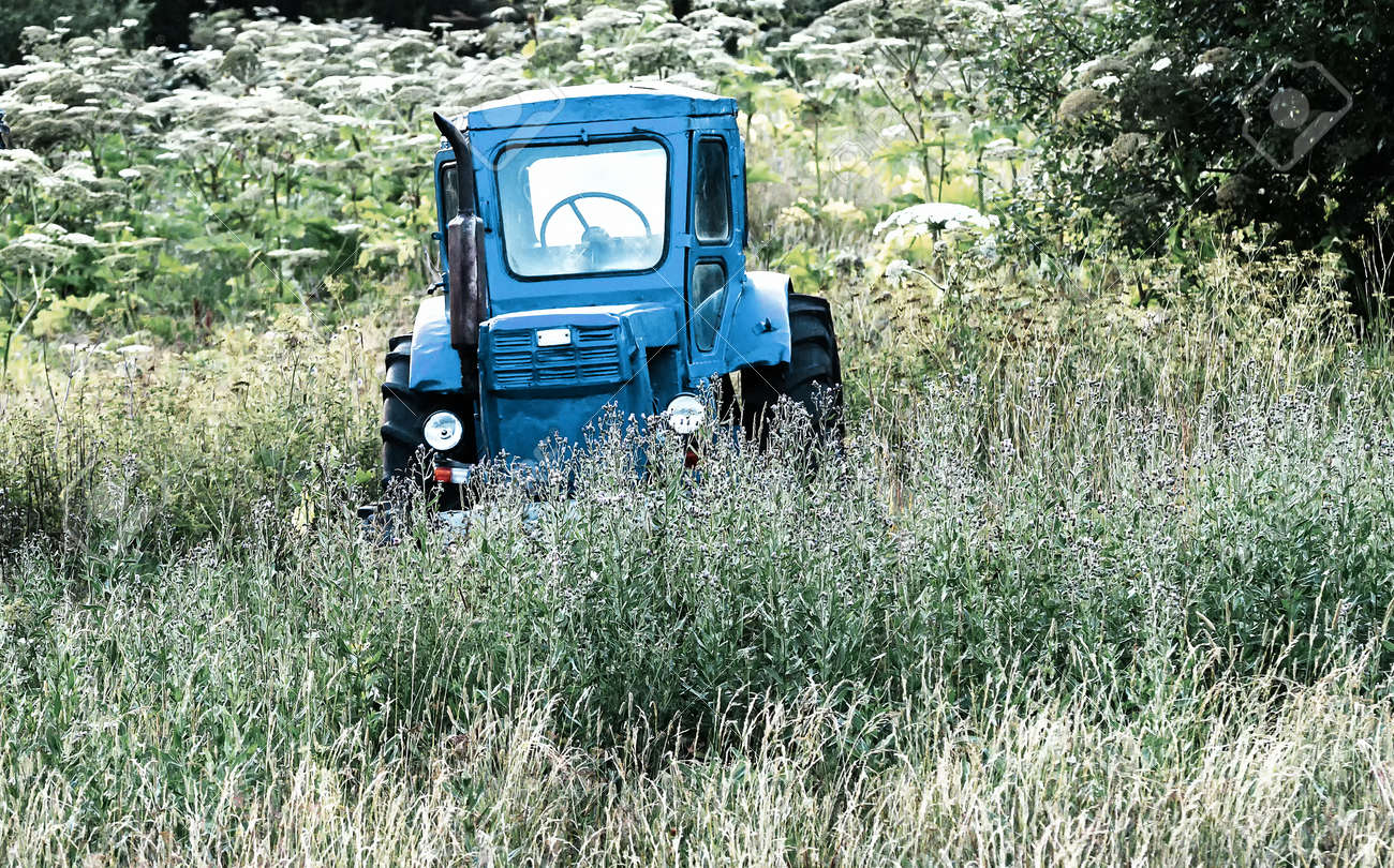 Old blue tractor on the tall grass field - 171719530