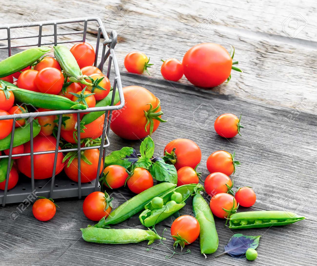 Tomatoes and green peas in metal basket on wooden rustik table. - 172473095